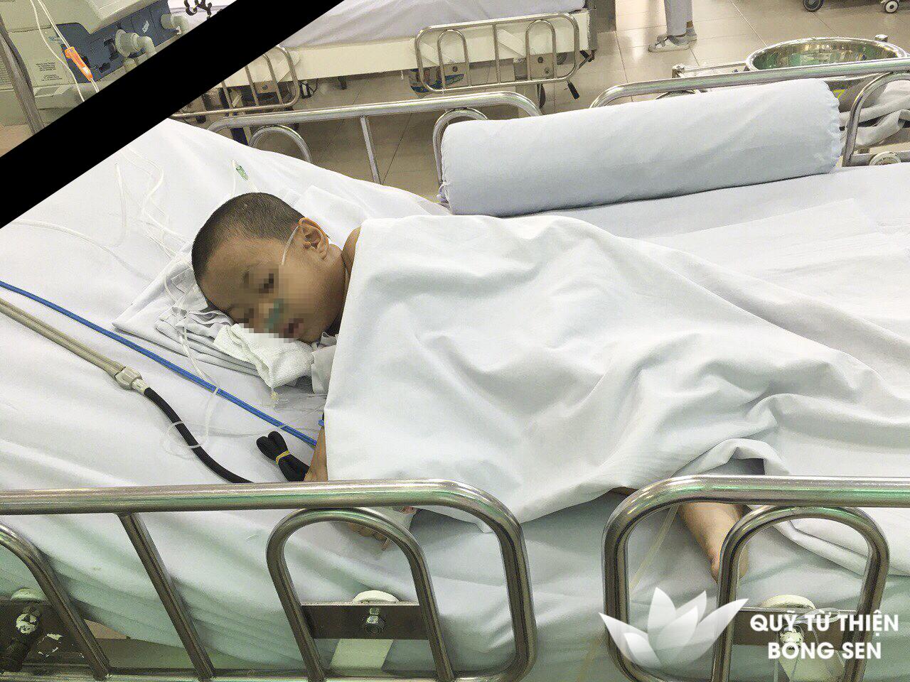Kỳ 402: Bé Võ Văn Nam (7 tuổi) quê Tiền Giang, u não, hỗ trợ 8.100.000 đồng ngày 08/03/2019